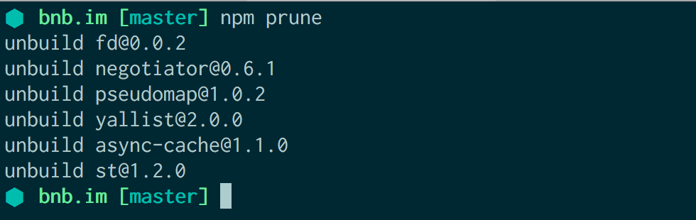 Running npm prune on a Node project