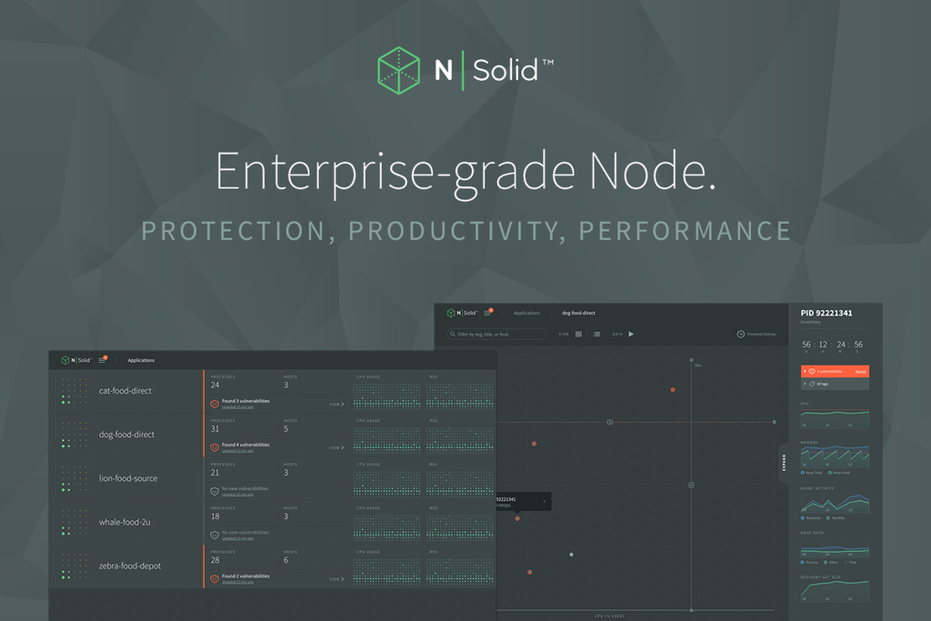 N|Solid enterprise-grade Node